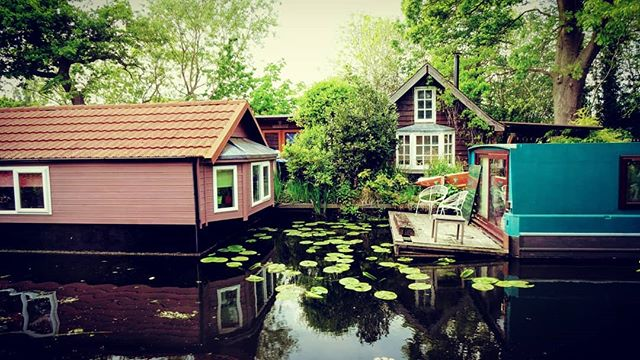 #autohash #UnitedKingdom #England #water #house #wood #outdoors #nature #summer #architecture #travel #traveling #visiting #instatravel #instago #family #tree #wooden #garden #bungalow #building #river #home #old #lake #canal #waterlily - from Instagram