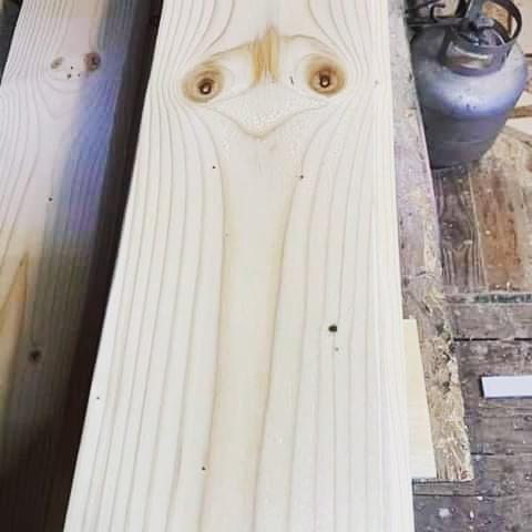I found an ostrich in a plank of wood!!! - from Instagram